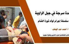 بيان صحفي: مجزرة بلدة سرجة في جبل الزاوية حلقة من سلسلة إجرام لوأد ثورة الشام